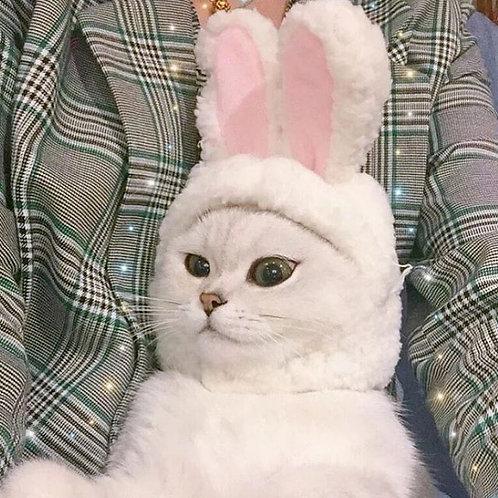 兔耳頭套 魔術貼 (貓狗適用)