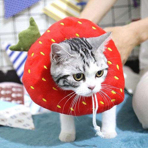 防舔圈 伊麗莎白圈 (貓狗適用) 草莓 檸檬 雞髀
