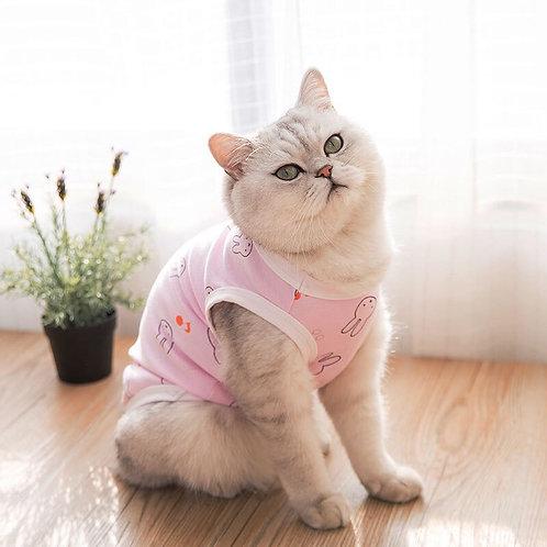 春夏寵物衣服 (貓狗適用)