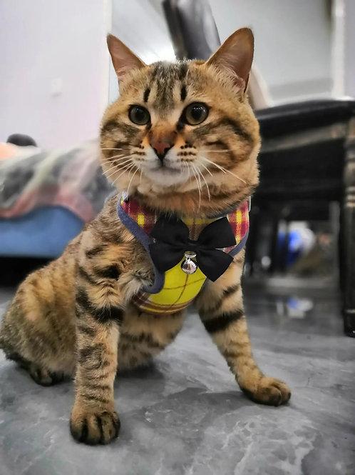 防掙脫牽引繩 貓帶