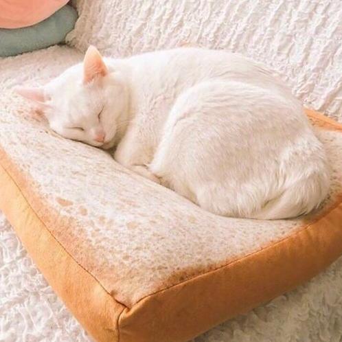 方包坐墊 抱枕