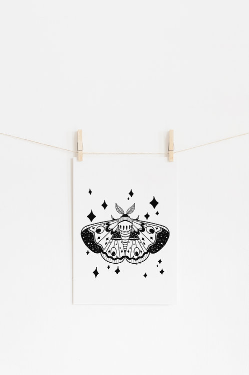 Starry Moth Art Print