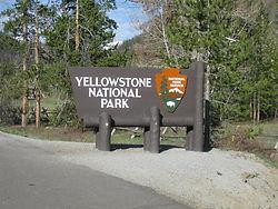 vantage-blog-national-parks-pass-yellows