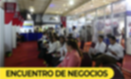 REPORTE EXPO 2019-3.png