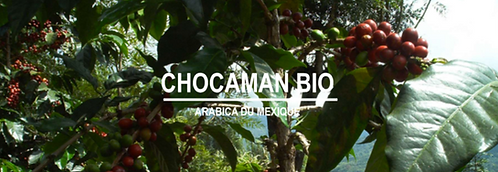 Mexique Chocaman Bio