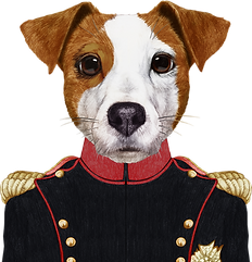 Napoleon Dog