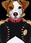 Dog Napoleon