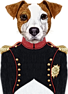 Napoleone Dog
