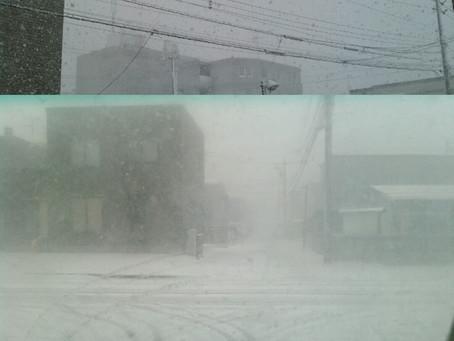 車で走っていると一寸先は真っ白です。