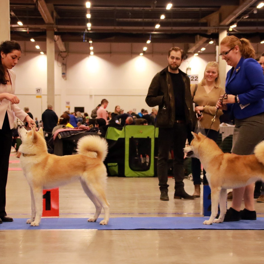 Till vänster: Sandra med Jenna, Till höger: Linnéa med Johanna :D  Bild av: Nicole Casey