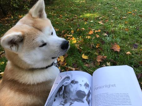 Hundens Beteendebiologi