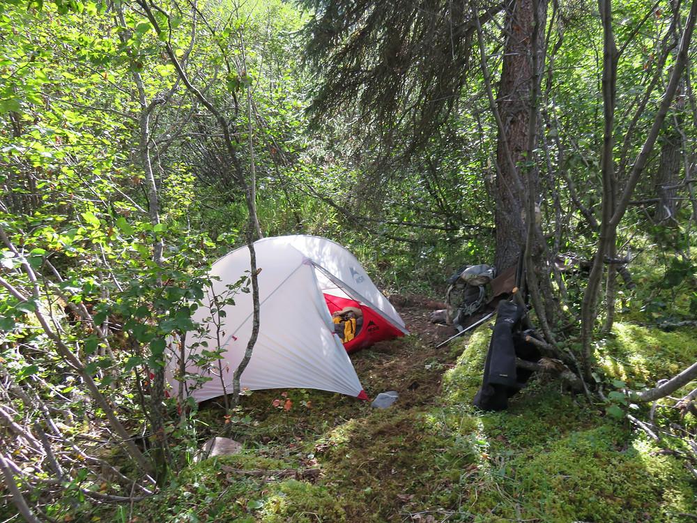 Josh's camp
