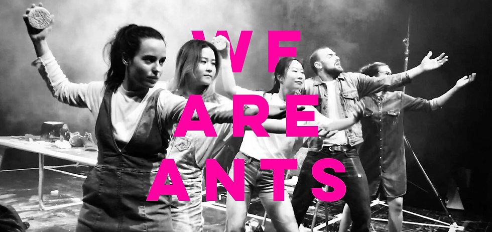 ANTS homepage1.1png.jpg