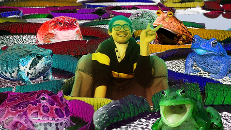 Frogs & Toads - no texto.png