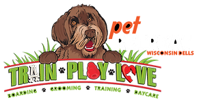 Pet Retreat logo newblack.png