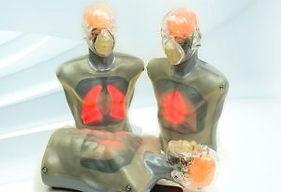 TRANSMAX-CPR-MANNEQUIN-2-300x205.jpg