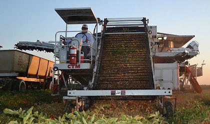 Farm Consulting California