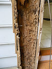 Wood Boring Insect Inspections