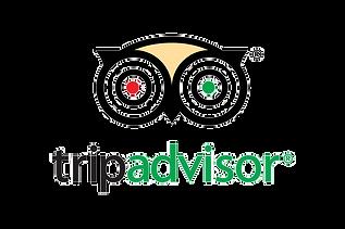 TripAdvisor_edited.png