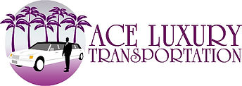 ACE LOGO AND NAME JPG.jpg
