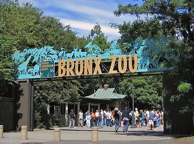 Bronx Zoo and Arthur Avenue Lunch
