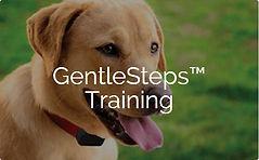 GentleSteps Training