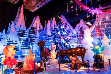 Christmas on the Potomac Gaylord National Resort And ICE!