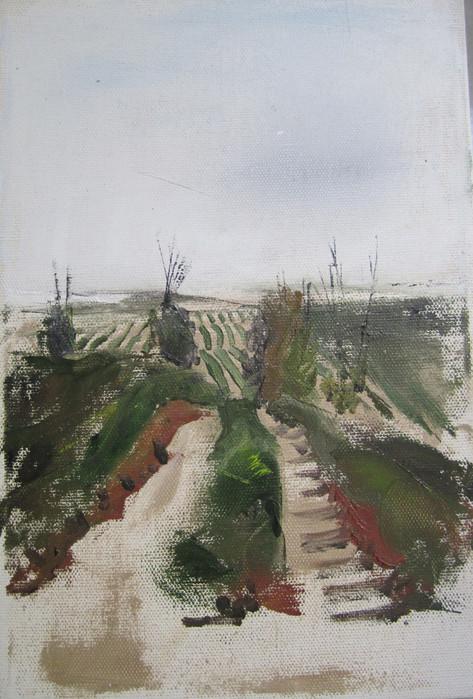 Jahoba field Hatzarim