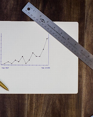 Charting Goals and Progress_edited.jpg