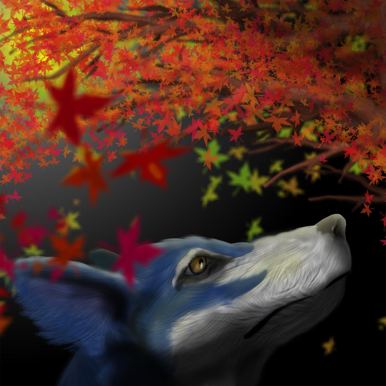 秋の空を見上げる