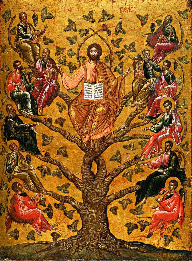 СЛОВО В НЕДЕЛЮ ПРЕД РОЖДЕСТВОМ ХРИСТОВЫМ, СВЯТЫХ ОТЕЦ