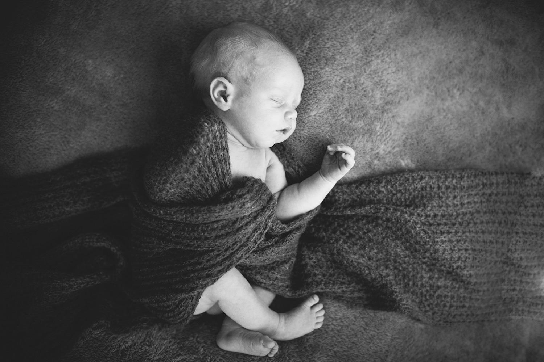 Newborn+Photographer+Auckland029