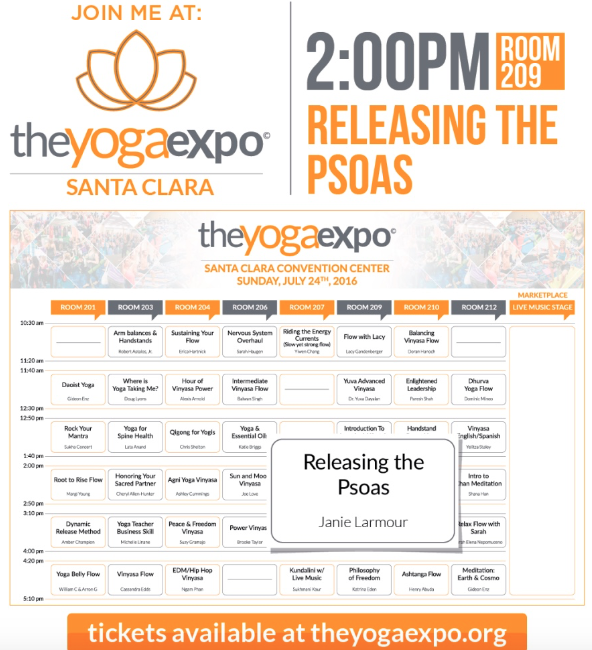 The Yoga Expo, Silicon Valley