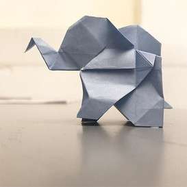 Rhino, grasshopper and elephants.jpg