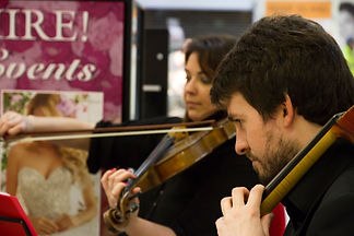 String Quartet Midlands