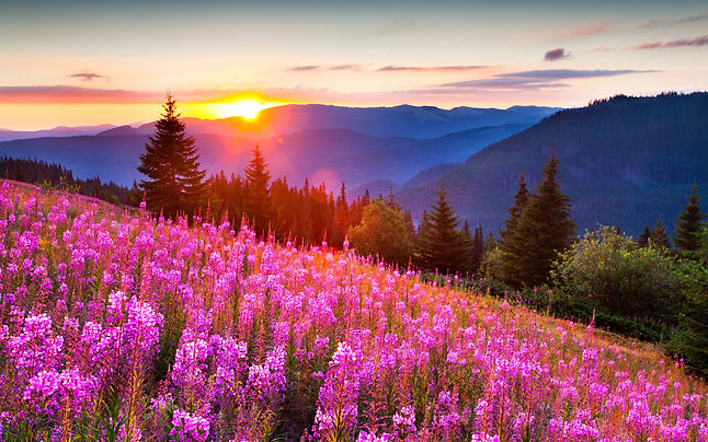 priroda-gory-leto-svet-solnca.jpg