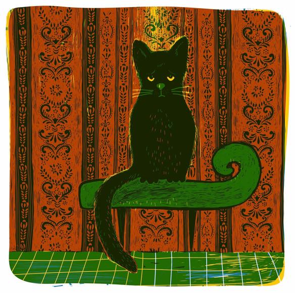 Black sad cat