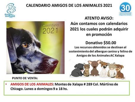 ACTIVIDADES DE AMIGOS DE LOS ANIMALES PARA ABRIL 2021.