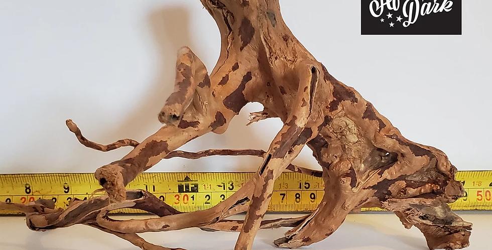 Spiderwood a15 wysiwyg
