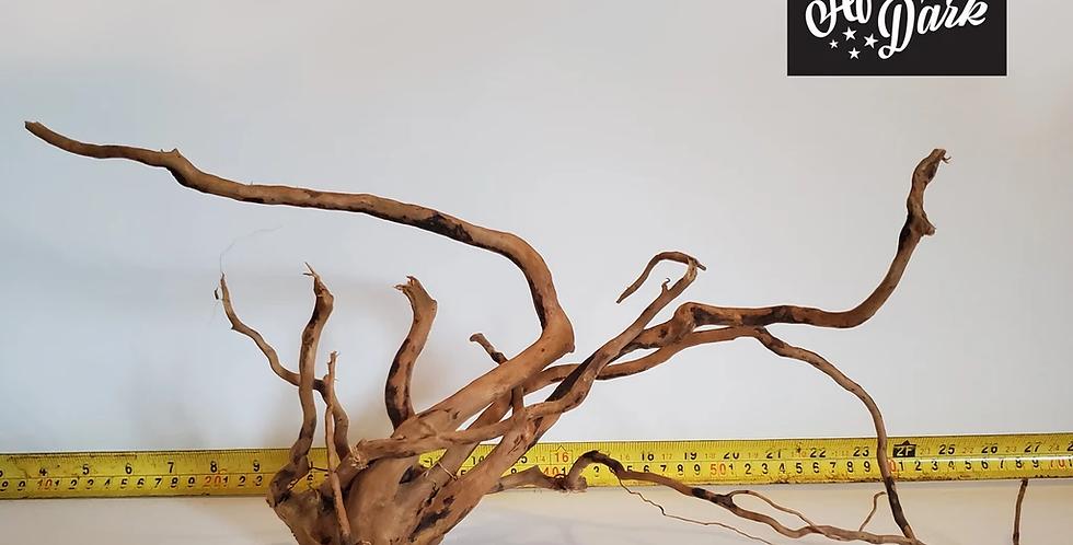 Spiderwood a9 wysiwyg