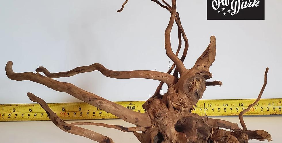 Spiderwood a8 wysiwyg