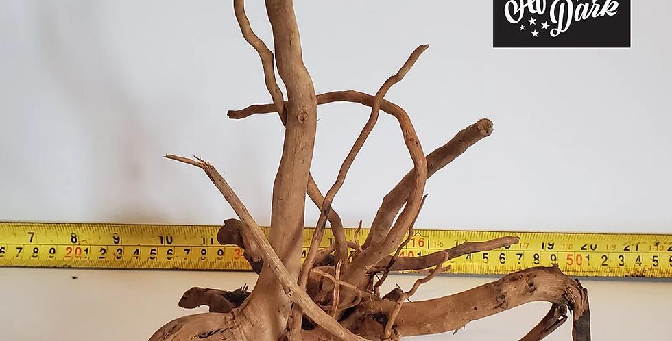 Spiderwood a4 wysiwyg