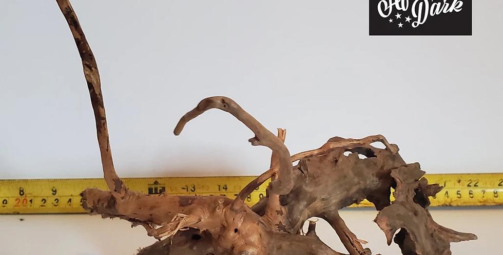 Spiderwood a5 wysiwyg