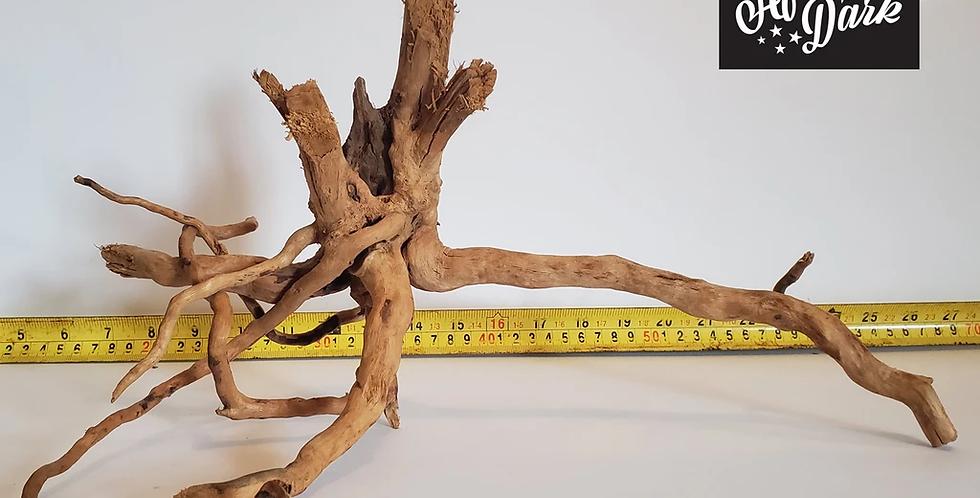 Spiderwood a2 wysiwyg