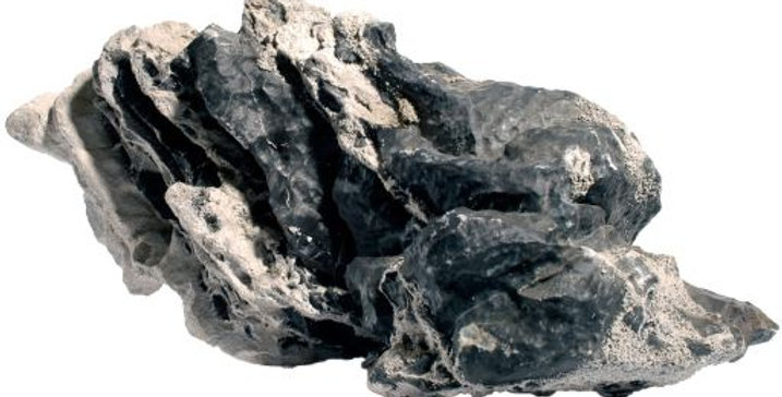 Leopard Stone