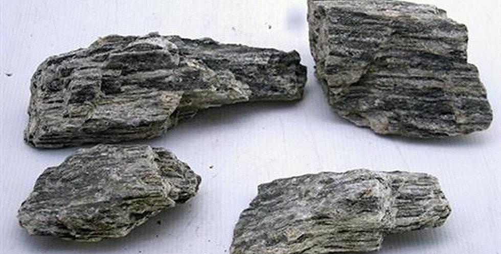 Blue Petrified Wood