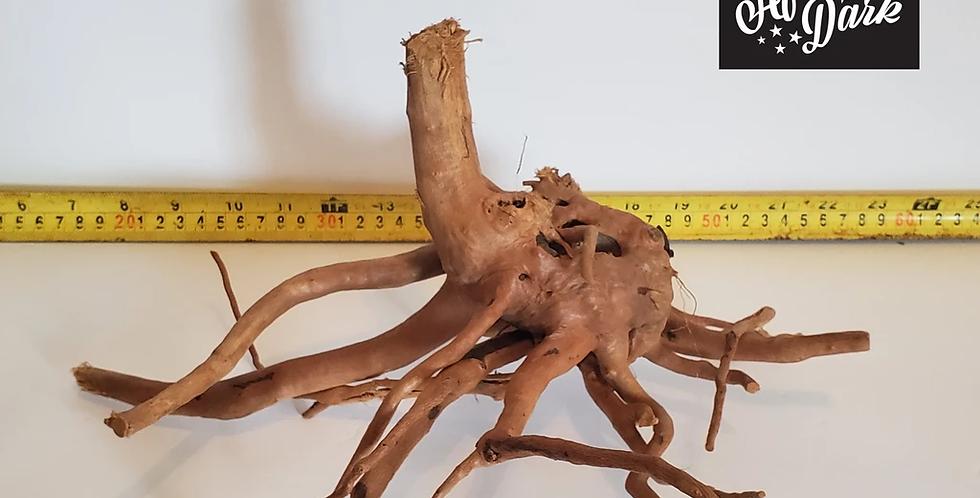 Spiderwood a1 wysiwyg