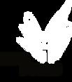 IB-logo-header.png