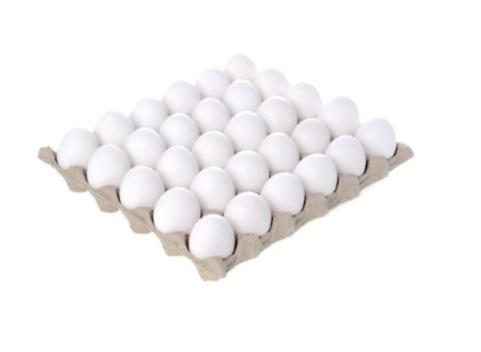 Maple de Huevos Blancos
