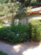 רימון- מרכז מומחים לילד ולמשפחה.במרכז מיטב הפסיכולוגים והמטפלים בפריסה ארצית. מעמק חפר, אזור השרון, תל אביב, גוש דן. מומחים בטיפול פסיכולוגי, הדרכת הורים, טיפול